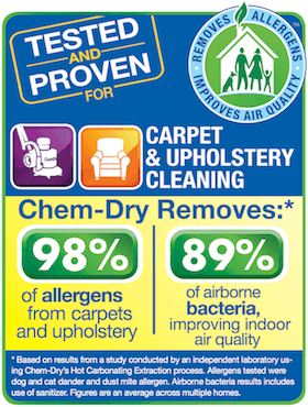 healthy carpet cleaning laramie