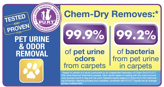 pet urine removal health study