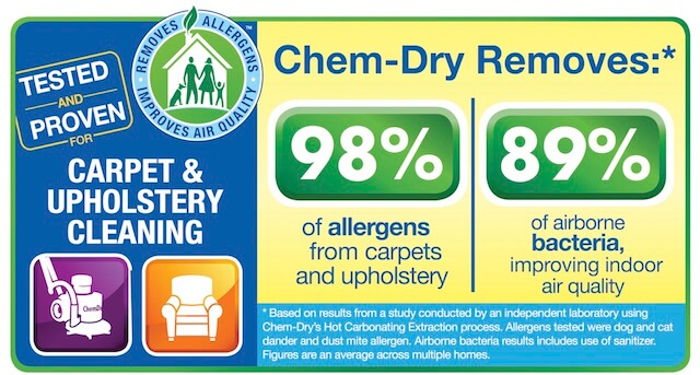 healthy upholstery cleaning